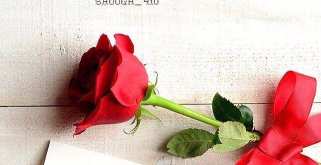 صورة صور صباح الخير حب , اجمل الصور الرومانسية المكتوب عليها صباح الخير
