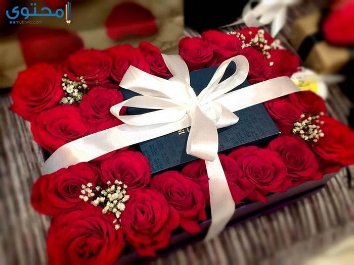 علم تسرب كراهية اجمل هدية لعيد ميلاد Sjvbca Org