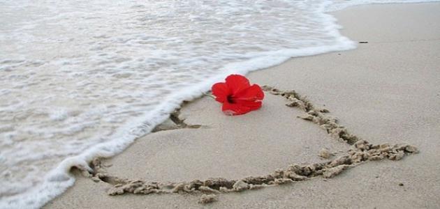 صور ثقف نفسك فيس بوك عن الحب , معلومات عن الحب