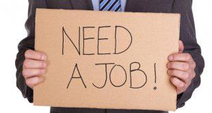 صورة حلول مشكلة البطالة , اقضى على البطاله فى خطوات