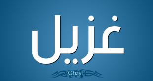 صور معنى اسم غزيل , تعرف على اصل كلمه غزال ومعناه
