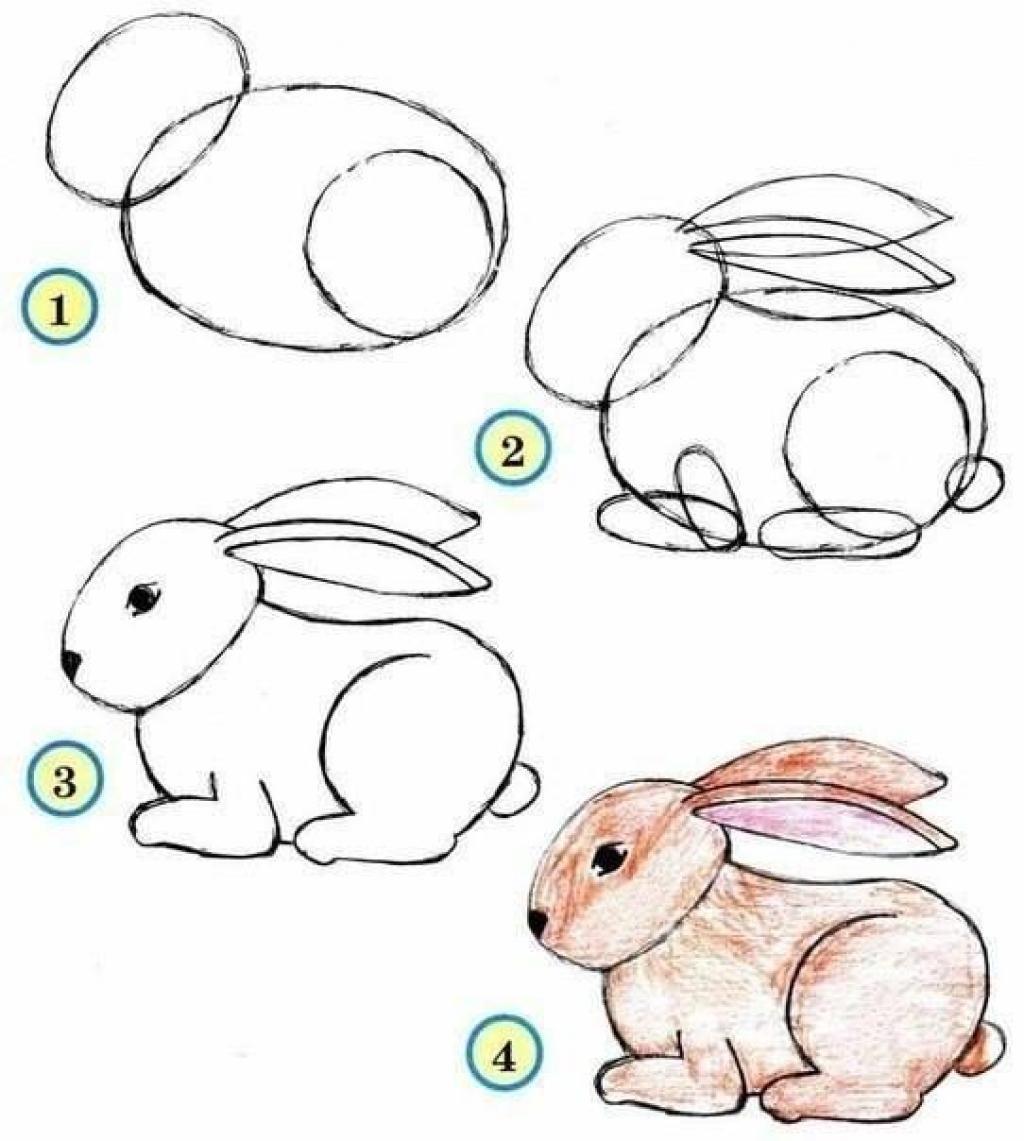 طريقة رسم الحيوانات خطوة بخطوة رسم الحيوانات بطريقة سهله حلوه خيال
