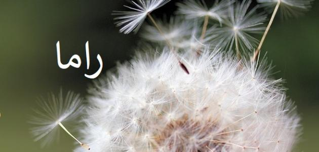صور معنى راما في لسان العرب , تضارب المعاني والاحكام لاسم راما