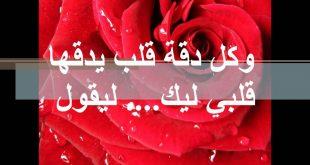 صورة شعر بدوي حب , الشعر في الحب