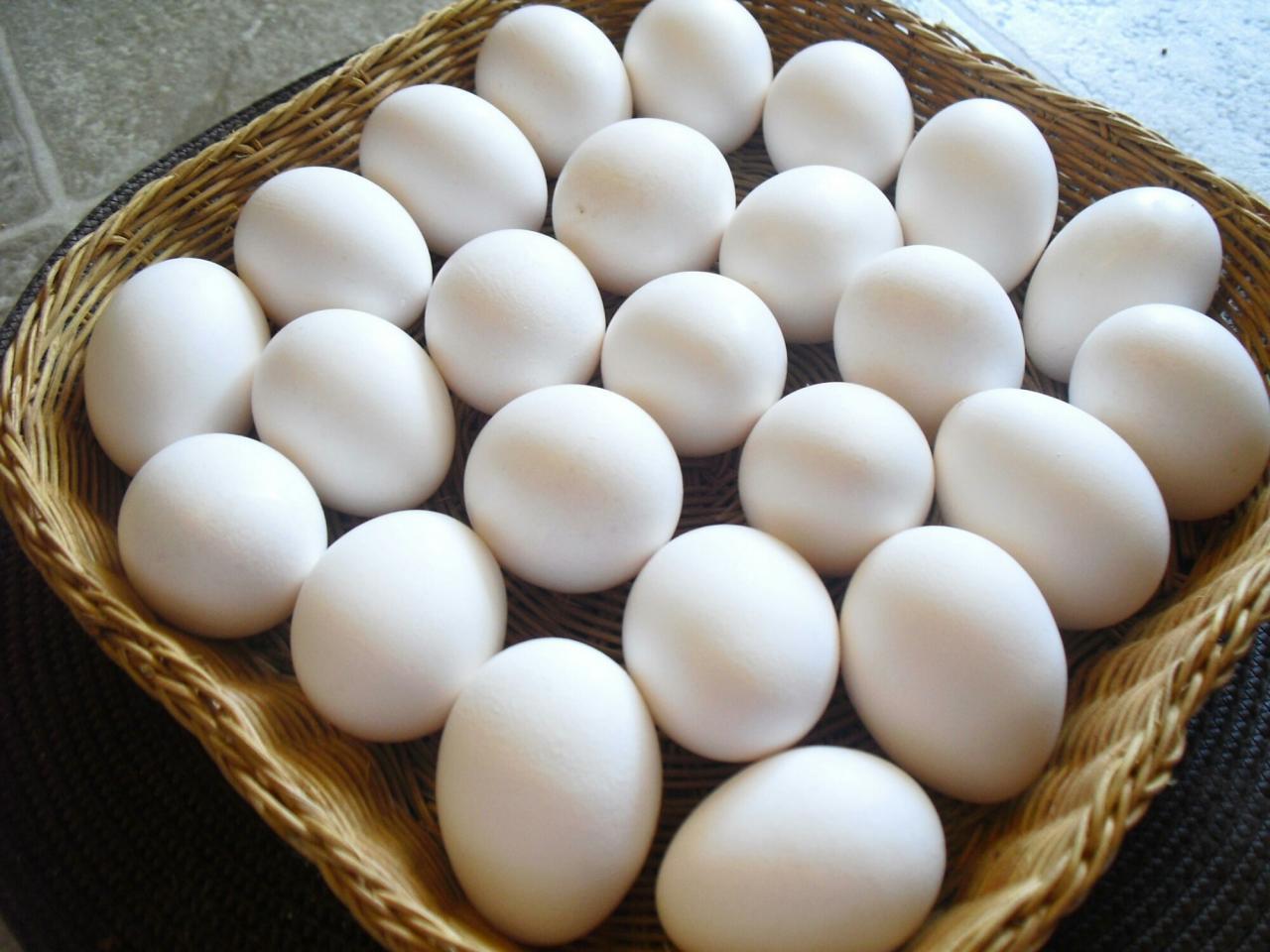 صورة تفسير حلم البيض في الحلم , احلام البيض وتفسيرها
