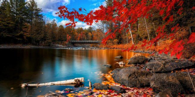 صور اجمل الخلفيات الطبيعية , خلفيات طبيعية تصر النظر