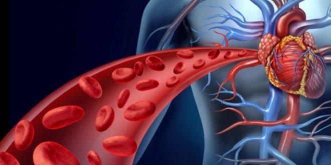 صورة اعراض الدورة الدموية البطيئة , ماهي اسباب واعراض بطء الدورة الدموية
