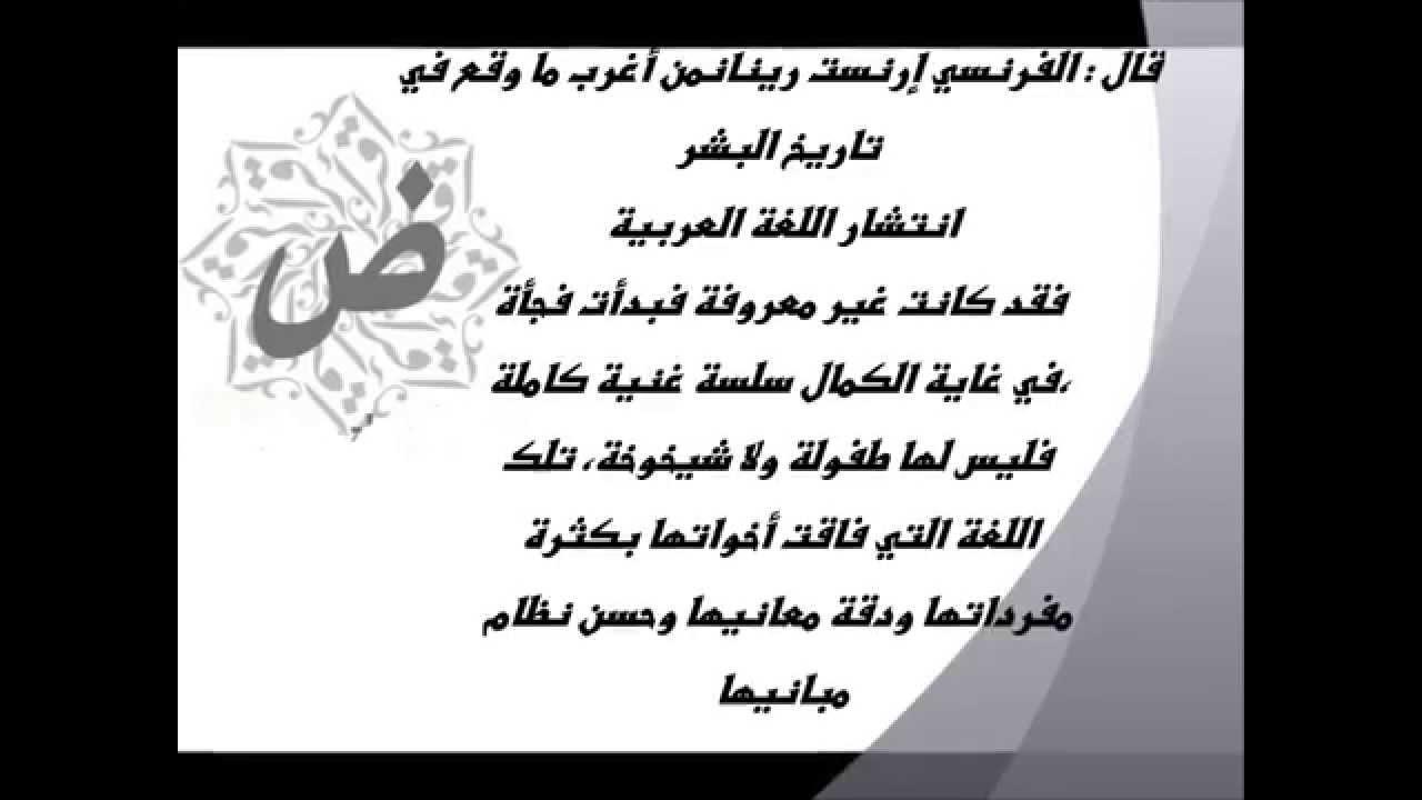 صورة حكم عن اللغة العربية الفصحى , كلام فى حق اللغه العربية