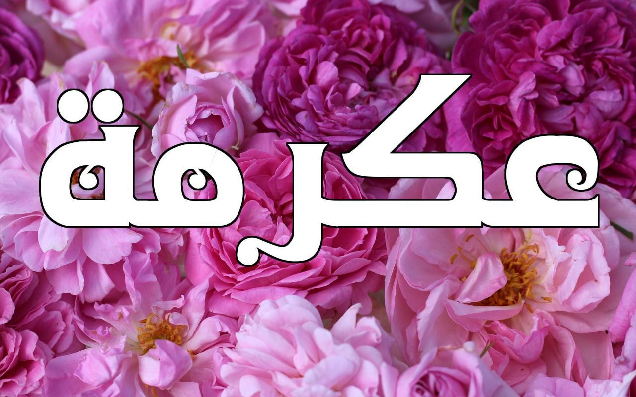صورة معنى اسم عكرمة , صفات اسم عكرمة ومعناه الاصلى