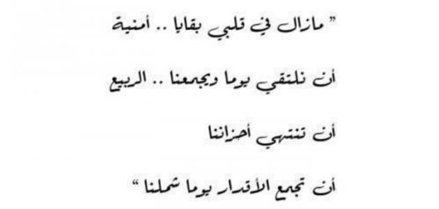 صورة ابيات شعر مصريه , كلام في حب مصر