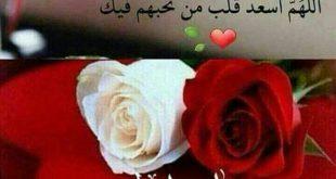 صورة احلى رسائل صباح للحبيب , رسائل جميلة لمشاركة الاحباب بالنهار السعيد